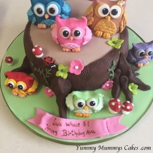 Super Girls Birthday Cakes Yummy Mummys Cakes Cakes For All Occasions Funny Birthday Cards Online Elaedamsfinfo